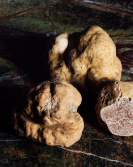 truffe-fraiche-blanche-tuber-magnatum-pico-gastronomie-italie